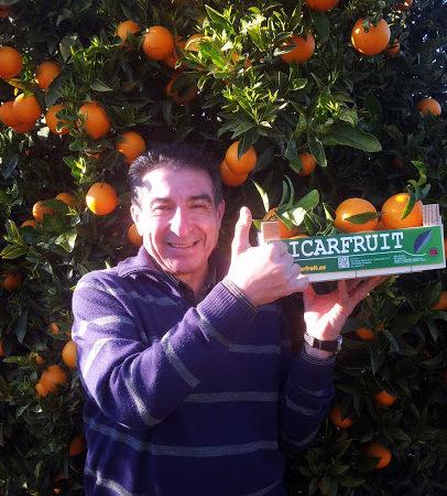naranja-navelate